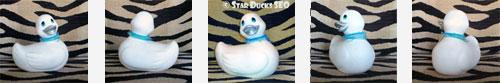 Star Ducks SEO : le référencement naturel pour les Nuls