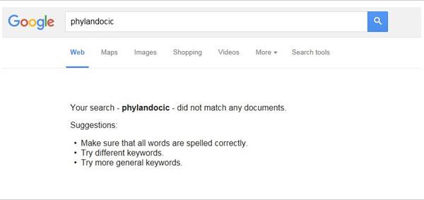 phylandocic zéro résultat sur Google